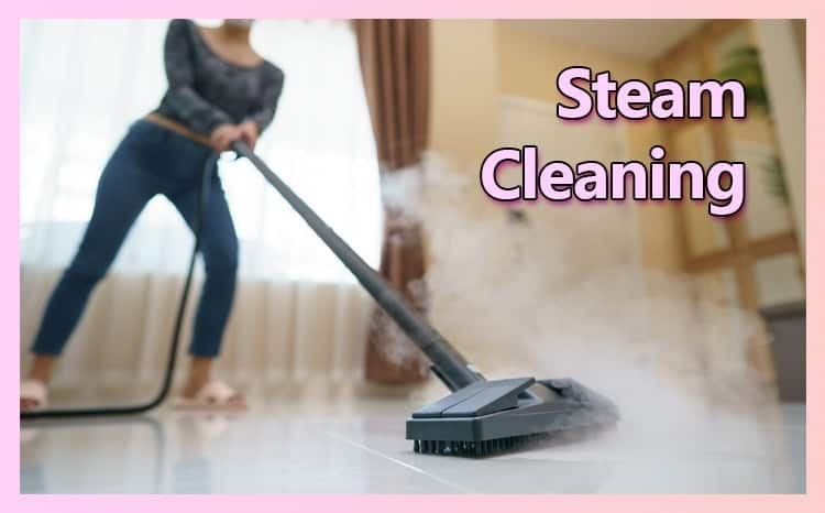 Steam Cleaning Your Grout
